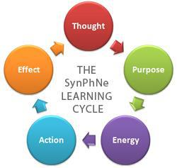 SynPhNe Learning Cycle